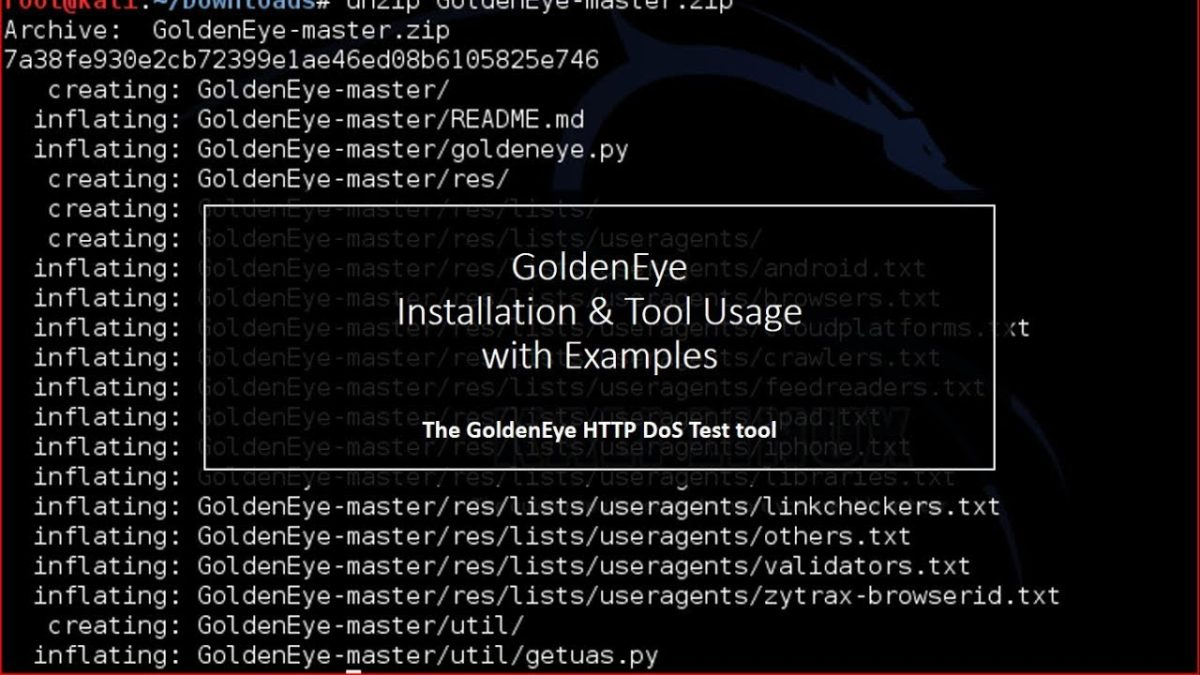 Golden Eye DDoS Tool : Installation and Tool usage with examples