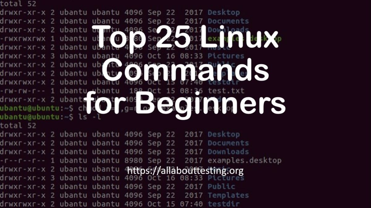 Top 25 Linux Commands for Beginners